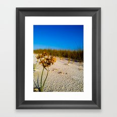 Beach Bouquet Framed Art Print