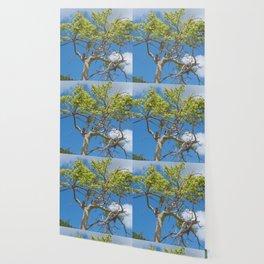 tree in the sky Wallpaper