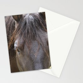 Hello, Beautiful Stationery Cards