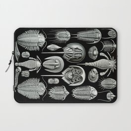 Trilobites and Fossils by Ernst Haeckel Laptop Sleeve