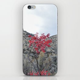 Alive In the Valley iPhone Skin