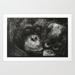 Orangutan Mother and Baby Scratchboard Art Print
