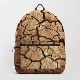 Cracked Earth Backpack
