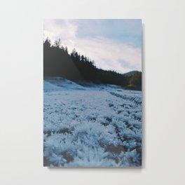 Frostbite Metal Print
