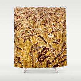 High grain image Shower Curtain