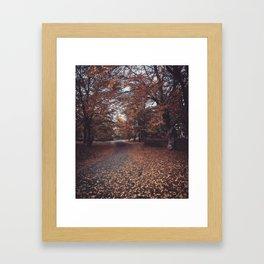 Autumn Interlude  Framed Art Print