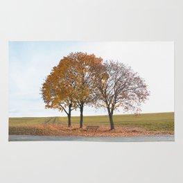 Simple autumn scene Rug