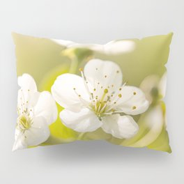 Beautiful cherry blossom on a vivid green background - summer atmosphere Pillow Sham