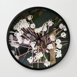 Longwood Gardens Orchid Extravaganza 13 Wall Clock