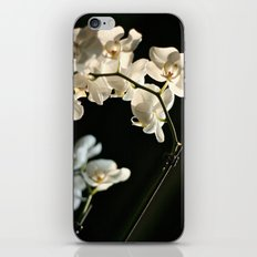 Orchid flowers iPhone & iPod Skin