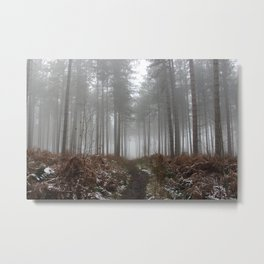 Forest Metal Print