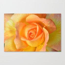 Bright Yellow Rose Canvas Print
