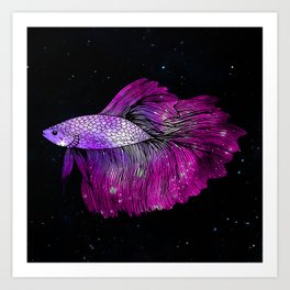 Pink Galaxy Betta Fish Art Print