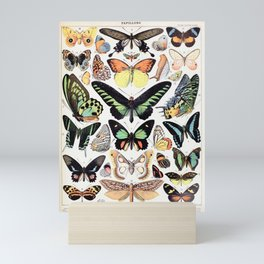 Adolphe Millot - Papillons B - French vintage poster Mini Art Print