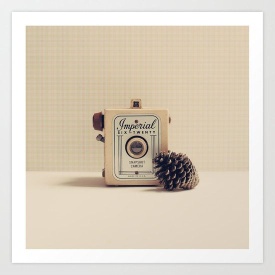 Retro Camera and Pine Cone Art Print