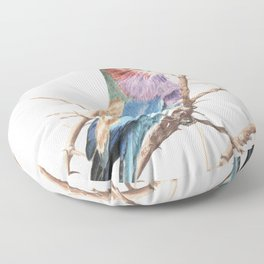 Lilac breasted roller Floor Pillow