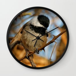 A Hungry and Hopeful Black-Capped Chickadee Wall Clock
