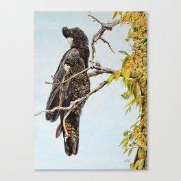 Black Cockatoos Canvas Print