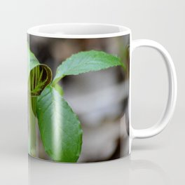 Michigan Wild Plant Coffee Mug