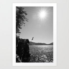 Summer Plunge Art Print