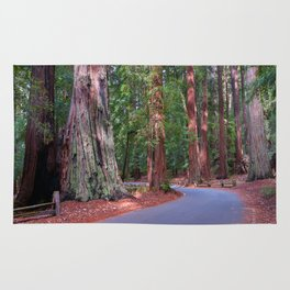 Big Basin Redwoods State Park Rug