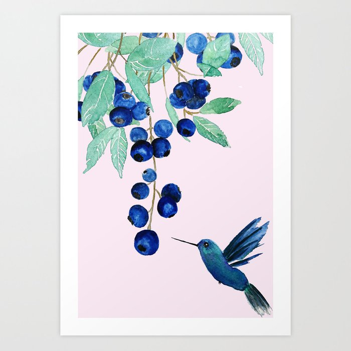 blueberry and humming bird Art Print