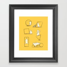 Geometry are Nuts Framed Art Print