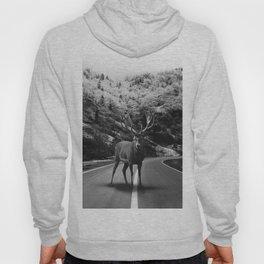 Deer Walker Road Hoody