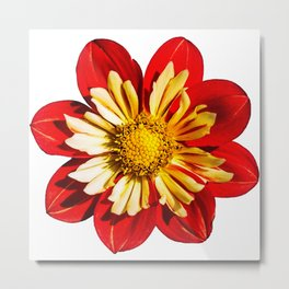 Red & Yellow Flower Metal Print