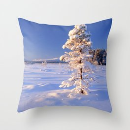 Snow covered trees in winter landscape Throw Pillow