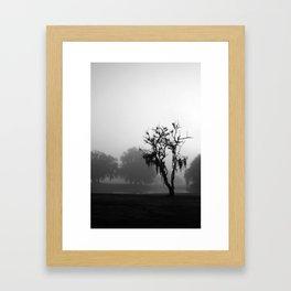 Fog Study 1 Framed Art Print