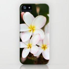 White Plumeria Cluster iPhone Case