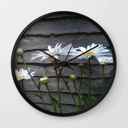 Giant Daisies with Wood background Wall Clock