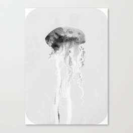 Jellyfish #2 Canvas Print