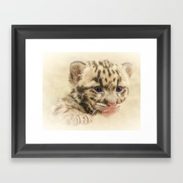 CUTE CLOUDED LEOPARD CUB Framed Art Print