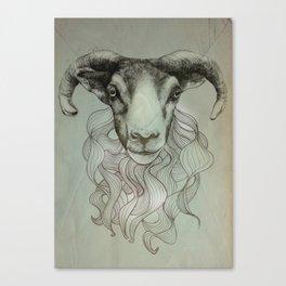 sheeps heid Canvas Print