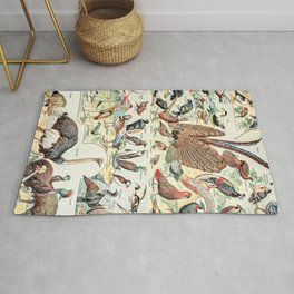 Wild Birds // Oiseaux by Adolphe Millot XL 19th Century Science Textbook Diagram Artwork Rug