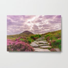 Stone Steps Up An Irish Mountain Metal Print