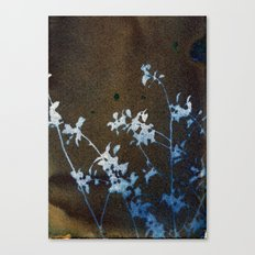 Revealed Floral Canvas Print