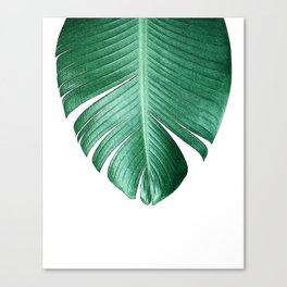 BANANA LEAF • Tropical Canvas Print