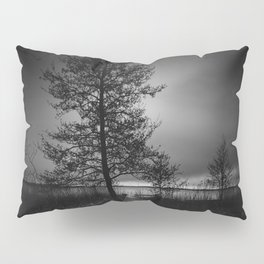 On the wrong side of the lake 9 Pillow Sham