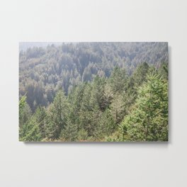 Mt Tamalpais Metal Print