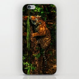 The Royal Bengal Tiger ( iPhone Skin