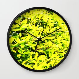 Holly Sunshine to Brighten Up Your Brand New Day Wall Clock
