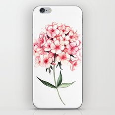 Watercolor flower phlox iPhone & iPod Skin