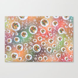 Fruit Loop 2 Canvas Print