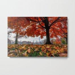NYC Fall Leaves-pt.2 Metal Print