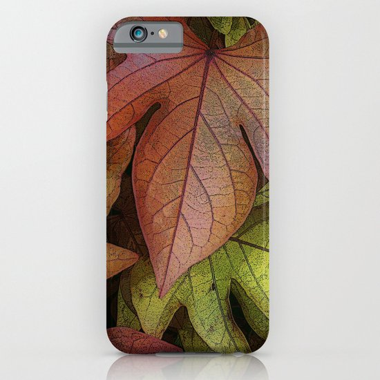 leaves at rest iPhone & iPod Case