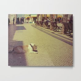 Boris the dog Metal Print