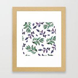 Isolated organic natural herbs illustration on white background Framed Art Print